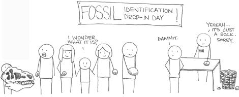 Fossils Rock